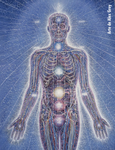 Energy Anatomy © Alex Grey
